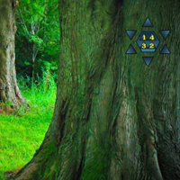 Free online flash games - Enchanting Fantasy Forest Escape game - WowEscape