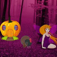 Free online flash games - Wild Turkey Fairyland Escape