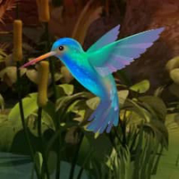 Free online html5 escape games - Doctor Bird Forest Escape HTML5