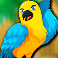 Free online flash games -  Avm Beautiful Bird Escape