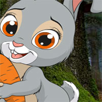 Free online flash games - AVM Little Funny Rabbit Rescue