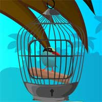 Free online flash games - Cuckoo Bird Rescue GamesClicker game - WowEscape