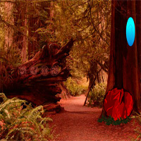 Free online flash games - Redwood Forest Escape game - WowEscape
