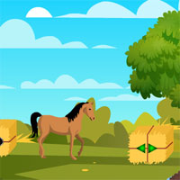 Free online flash games - 8b Farm Boy Escape 2