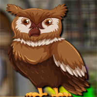 Free online flash games - Avmgames Barn Owl Escape game - WowEscape
