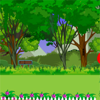 Free online flash games - Avm Pato Escape