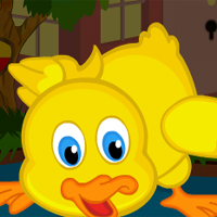 Free online flash games - Cute Duckling Bird Escape