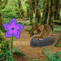 Free online flash games - HOG Hidden Green Forest game - WowEscape