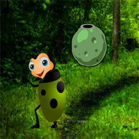Free online flash games - G2R Crazy Beetle forest game - WowEscape