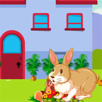 Free online flash games - Avm Escape The Rabbit game - WowEscape