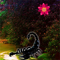 Free online flash games - G2R Black Scorpion Forest Escape
