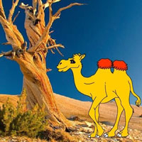 Free online html5 escape games - Help The Thirsty Camel HTML5
