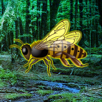 Free online flash games - Giant Wasp Forest Escape game - WowEscape