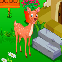 Rescue Cute Deer 2 Avm
