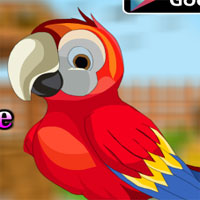 Free online flash games - AvmGames Cute Parrot Escape