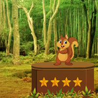 AvmGames Squirrel Forest Escape