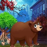 Circus Bear Rescue G4K