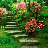 Free Online Flash Games   Backyard Flower Garden Escape Game   WowEscape