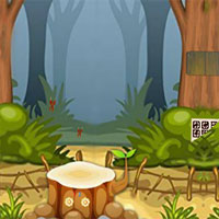 Free online flash games - Top10 Rescue The Cat game - WowEscape