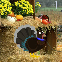 Free online flash games - Thanksgiving Fall Forest Escape