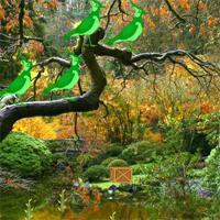 Japanese Garden Escape