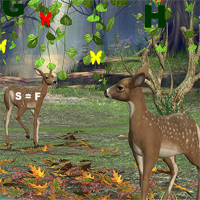 Free online flash games - Hidden247 Lost in the Forest