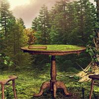 Free online flash games - 365Escape Old Garden Escape game - WowEscape
